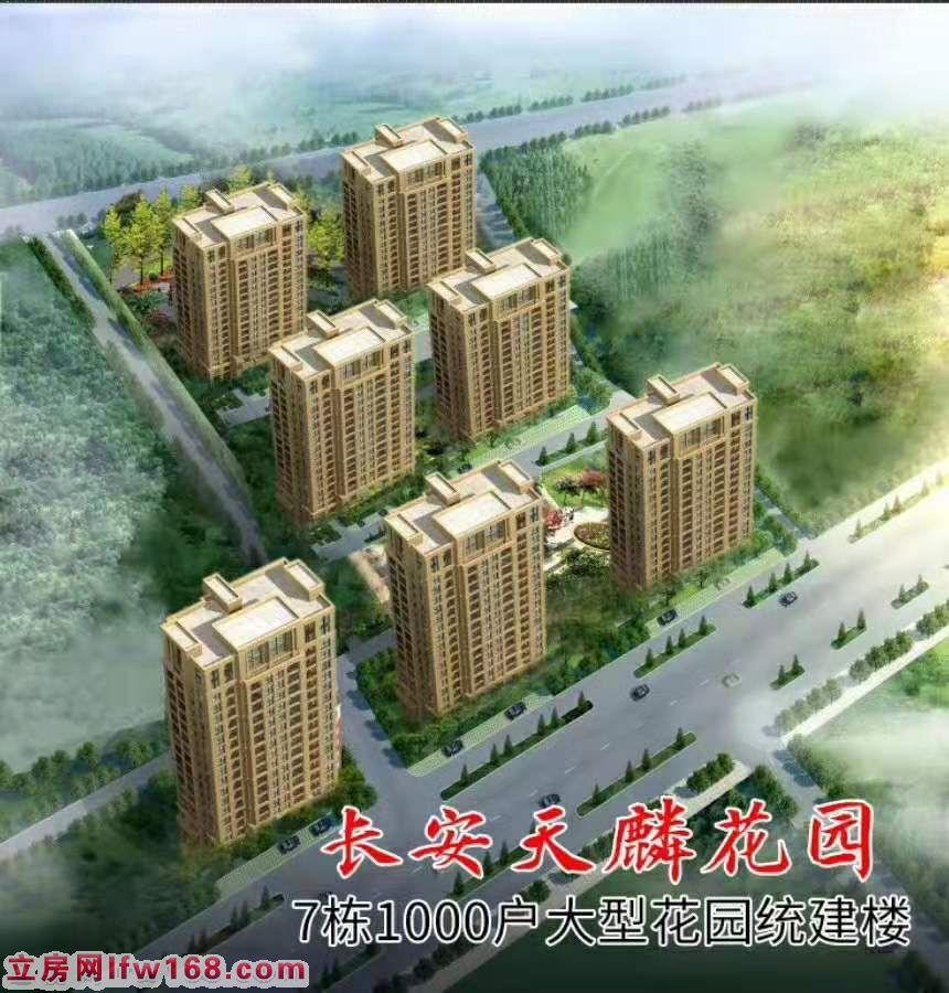 长安七栋大型花园统建楼《天麟花园》深圳实际距离100米 两梯4户,户户双阳台