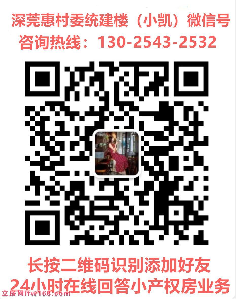 惠州惠东小产权房